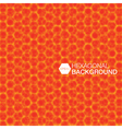 simple colorful background consisting hexagons vector image vector image