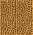 skin of leopard vector image