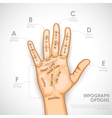 Palmistry Infographics vector image