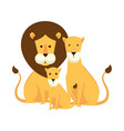 african lions family characters vector image vector image