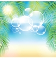 Bubbles above the sand beach and the palm branches vector image vector image