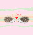 couple of happy loving hedgehogs valentines card vector image