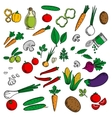 Farm vegetables and herbs sketches vector image vector image