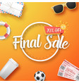 final sale poster vector image