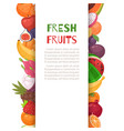 fresh tropical fruits in borders cartoon vector image