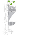 Grey Raccoon vector image