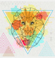hipster polygonal animal lion on artistic vector image vector image