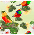 seamless texture tropical bird cute small vector image vector image