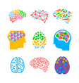 set human brains isolated on white background vector image