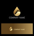 water drop eco gold logo vector image vector image