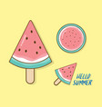 watermelon in summer flat design vector image vector image