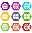 xray of rib icons set 9 vector image vector image
