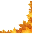 Autumn leaves background with space for text vector image vector image