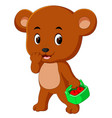 bear holding basket full of apple vector image vector image