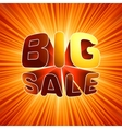 Big sale burst message EPS 8 vector image vector image