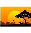 Cartoon collection animal in the africa vector image vector image