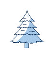 christmas pine tree decoration celebration vector image vector image