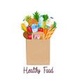paper bag of groceries vector image vector image