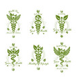 set caduceus conceptual emblems created with vector image vector image