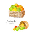 straw wicker basket with ripe and ruddy apples vector image