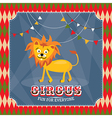 Vintage circus card with cute funny lion vector image vector image