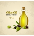 Bottle of oil with green and black olives vector image