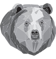 gray bear portrait abstract low poly design vector image