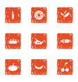 homemade food icons set grunge style vector image vector image