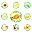 painted fruit icon vector image vector image