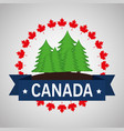 pine forest field canadian frame vector image vector image