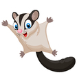 Sugar glider cartoon vector image vector image