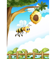 A tree near the fence with a beehive and a bee vector image vector image