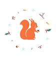 cute squirrel minimalistic vector image vector image