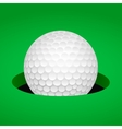 Golf ball in cup vector image vector image
