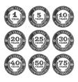 Grunge Anniversary Stamps Emblem vector image