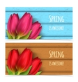 Tulip flowers composition vector image vector image