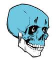 voodoo skull vector image vector image