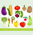 A large set of fresh vegetables Easily editable vector image