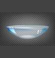 contact lens over black transparent background vector image
