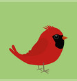 cute northern cardinal vector image vector image