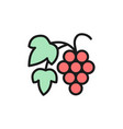 grape branch with berries flat color line vector image