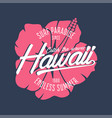 hawaii hibiscus surf vector image