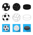 isolated object of sport and ball icon collection vector image vector image