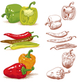 Peppers vector | Price: 3 Credits (USD $3)