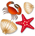 set of marine inhabitants crab starfish and vector image