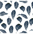 tropical seamless pattern with exotic blue leaves vector image