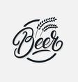 beer hand written lettering logo vector image vector image