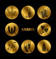 black grains silhouette cereals icons vector image