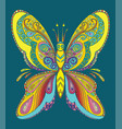 butterfly coloring book anti-stress vector image vector image