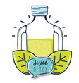 fruit juice detox vector image